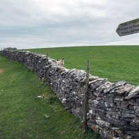 Just a short walk to the Coast to Coast Bridleway